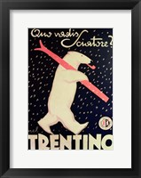 Framed Trentino