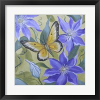 Framed Large Butterfly and Clematis