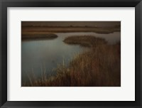 Framed Marsh