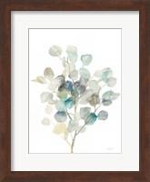 Framed Eucalyptus III White