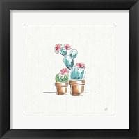 Framed Desert Bloom V