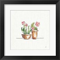 Framed Desert Bloom VI