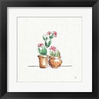Framed Desert Bloom VII