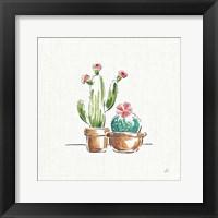 Framed Desert Bloom IV