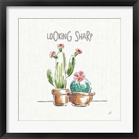 Framed Desert Bloom III
