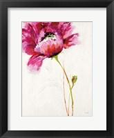 Framed Big Red Blossom