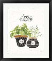 Framed Fine Herbs V