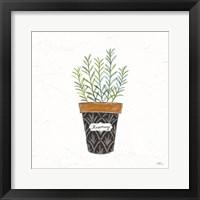 Framed Fine Herbs IX
