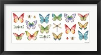 Framed Colorful Breeze Bright Butterflies and Bugs