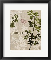 Framed Organic Parsley No Butterfly