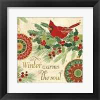 Winter Feathers VI Framed Print