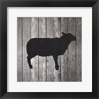 Framed Barn Sheep