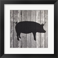 Framed Barn Pig