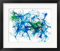 Framed Splatters 1