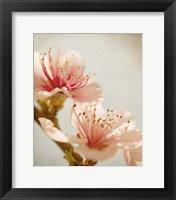 Framed Spring Whispers 1