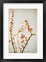 Framed Spring Whispers 2