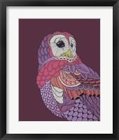 Framed Night Owl