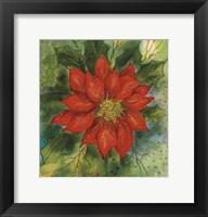 Framed Poinsettia 2