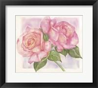 Framed Roses 2