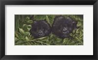 Framed Buddies