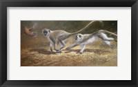 Framed Running Monkeys