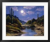 Framed Desert Splendor