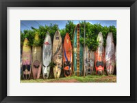 Framed Surf Boards