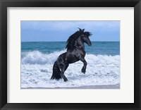 Framed Black Knight