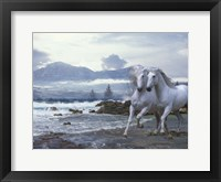 Framed Cold Mountain