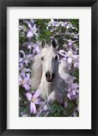 Framed Floral Portrait
