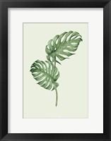 Framed Leaf Green