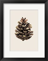 Framed Cone