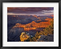 Framed Canyon View X