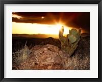 Framed Sunset in the Desert V