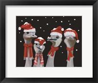 Framed Ostrich, Christmas Gals