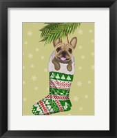 Framed French Bulldog in Christmas Stocking