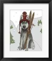 Framed Husky Skiing