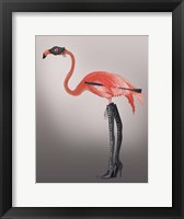Framed Flamingo with Kinky Boots