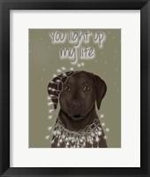 Framed Chocolate Labrador, You Light Up