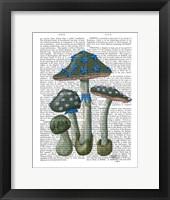Framed Psychedelic Mushrooms 1