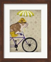 Framed English Bulldog on Bicycle