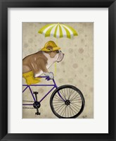 Framed English Bulldog on Bicycle