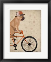 Framed French Bulldog on Bicycle
