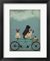 Framed Pug Tandem