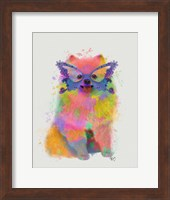 Framed Rainbow Splash Pomeranian