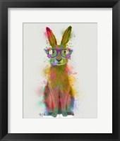 Framed Rainbow Splash Rabbit 1