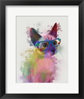 Framed Rainbow Splash Cat 2