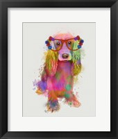 Framed Rainbow Splash Cocker Spaniel, Full