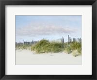 Beachscape IV Framed Print