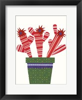 Framed Cheerful Succulent V